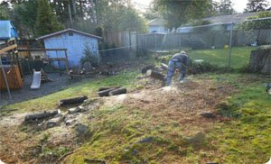 Stump-Removals-Tacoma-WA.jpg